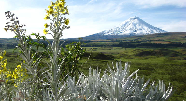 Cotopaxi Bike and Hike Day Tour from Quito Provided by Community Adventures