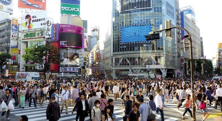 Tokyo Night Bike Tour Japan — #2