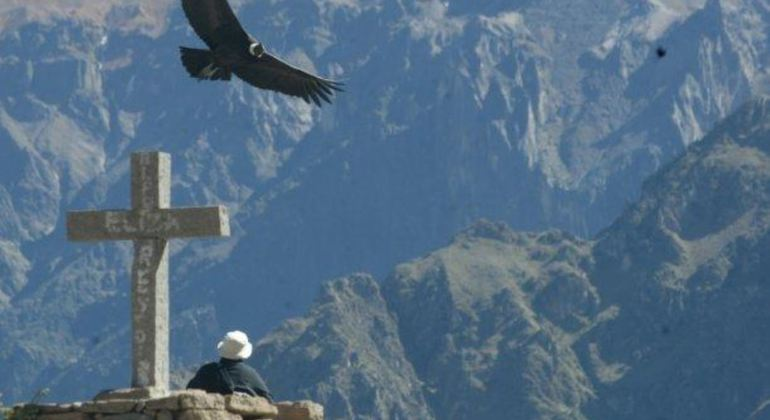 Colca Canyon Full Day Tour Provided by PVTravels