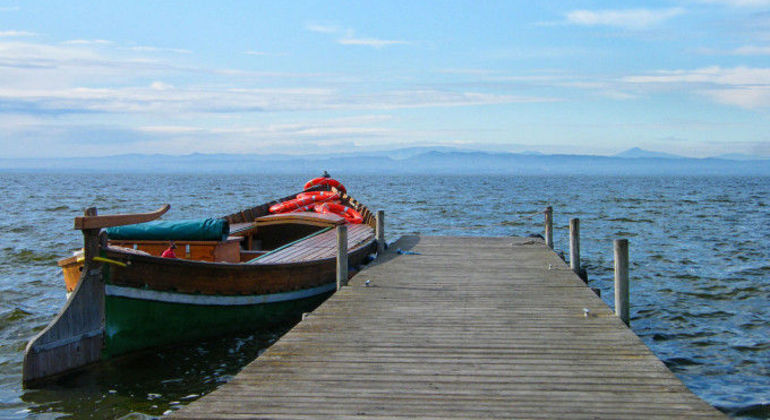 Excursion to L'Albufera Provided by Valencia and Go