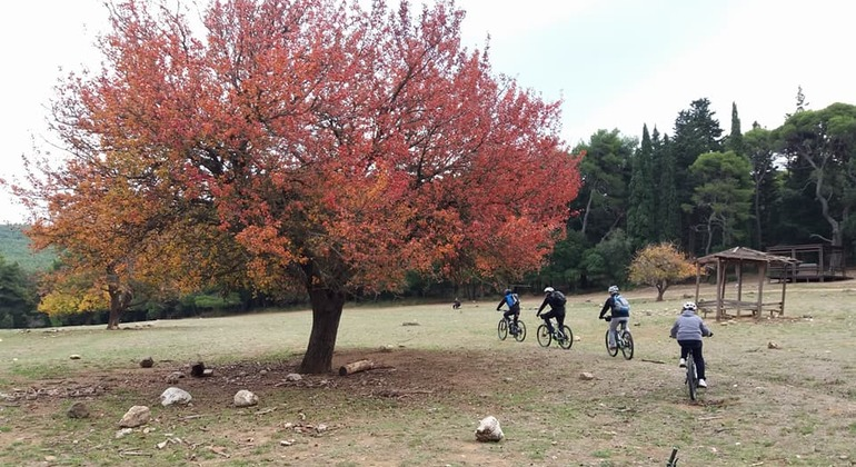 Electric Bike Parnitha Mtn Tour - Athens National Park Provided by Bike me up