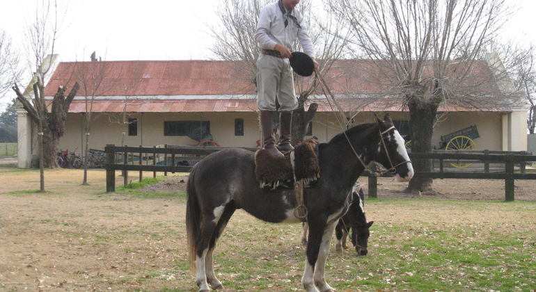 San Antonio de Areco Trip in Small Group Provided by Signature Tours