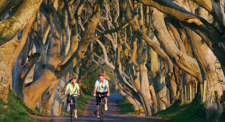 Dublin to Giant's Causeway & Game of Thrones Provided by Finn McCools Tours