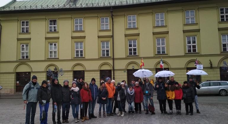 Free Old Town Krakow Tour Span/Eng Poland — #5
