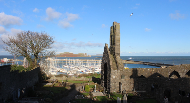Free Walking Tour Howth - Village Highlights Ireland — #1