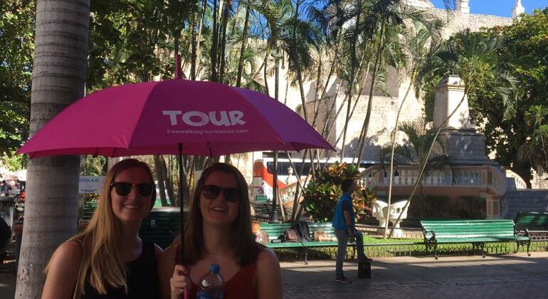 Free Tour Merida Mexico — #3