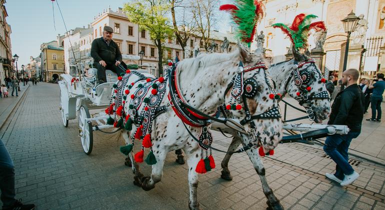 Krakow Old Town Free Walking Tour Poland — #9