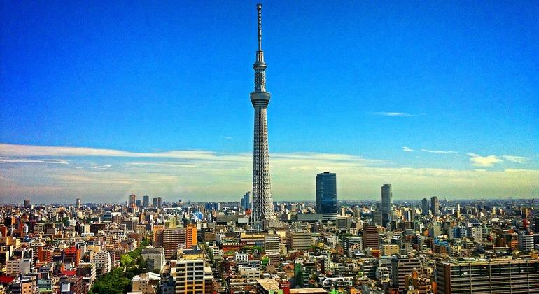 Tokyo Walking Tour Provided by Maria Harada