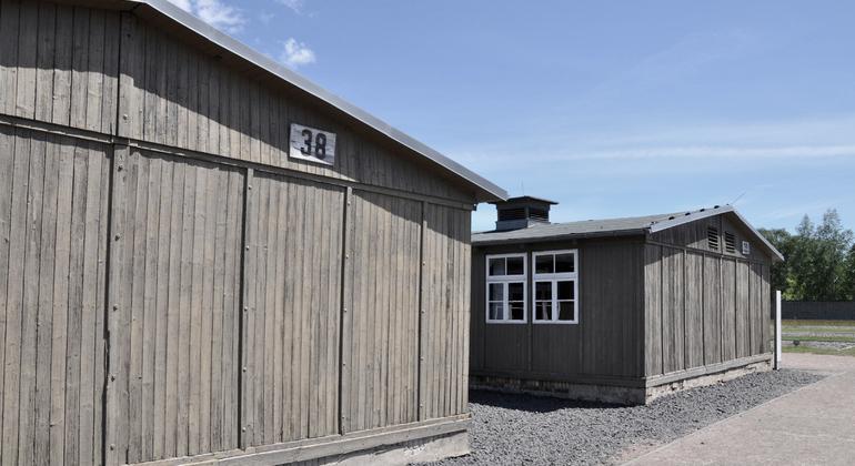 Sachsenhausen Memorial (ex concentration camp) Free Tour Germany — #6