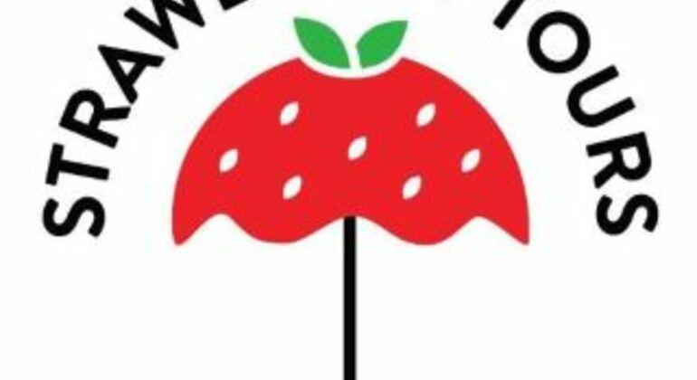 Tour por el Barrio Rojo de Ámsterdam Operado por Strawberry Tours