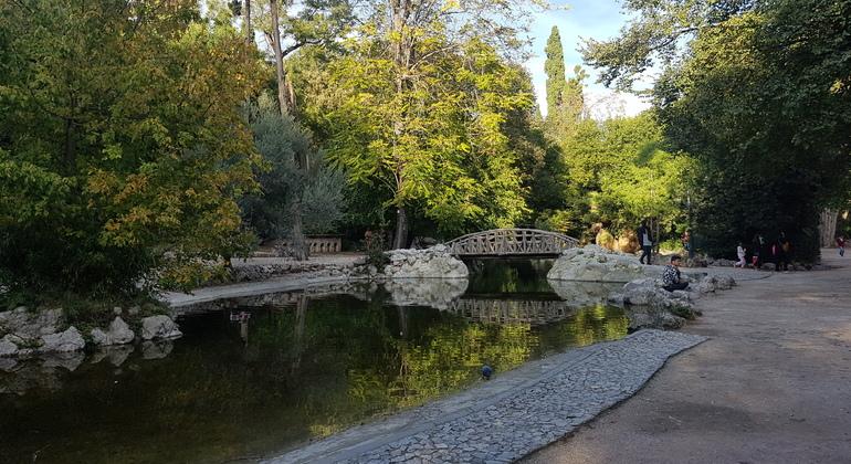 Athens Sunset Free Walking Tour Greece — #4