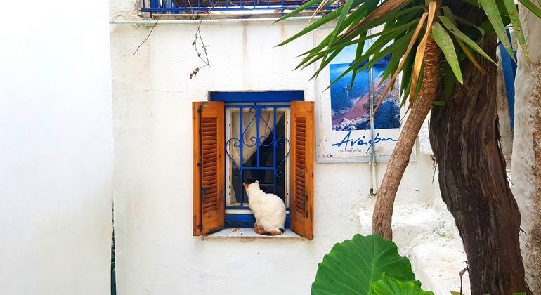 Athens Sunset Free Walking Tour Greece — #14
