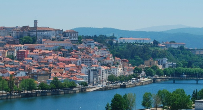 Coimbra Historical Walking Tour Provided by André