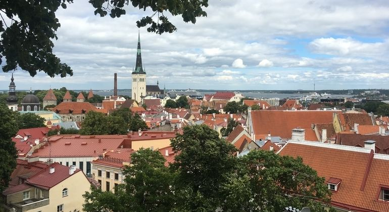 Tallinn Day Tour from Helsinki Provided by Helsinki Tour