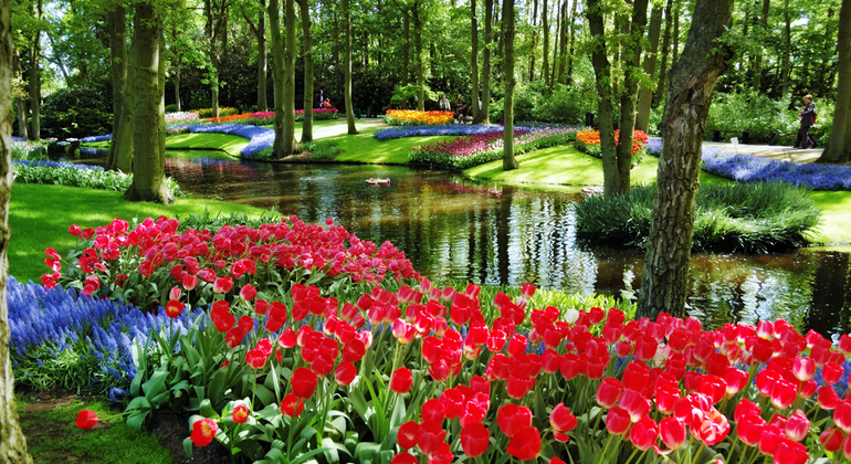 Keukenhof Gardens Day Tour Netherlands — #1