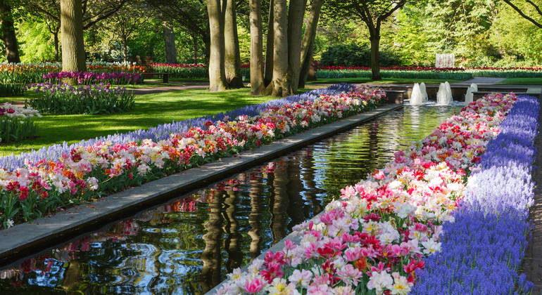 Keukenhof Gardens Day Tour Netherlands — #2