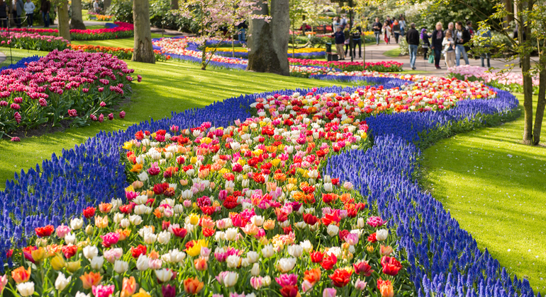 Keukenhof Gardens Day Tour Netherlands — #4