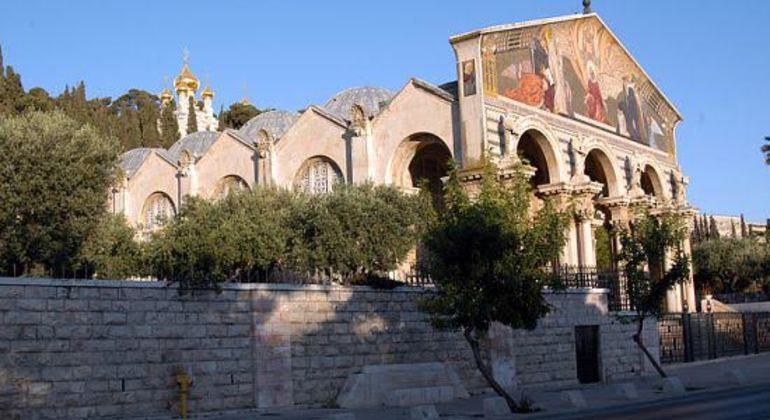 Mount of Olives to Gethsemane Walking Tour Provided by Zion Walking Tours