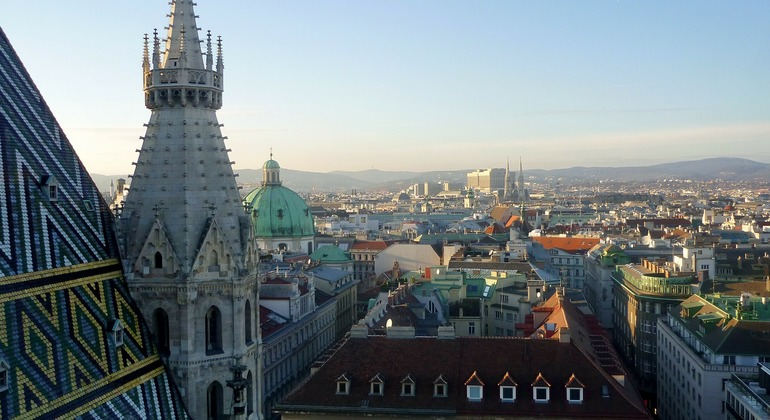 Charming Vienna through History and Art Provided by Frediano Picchiotti