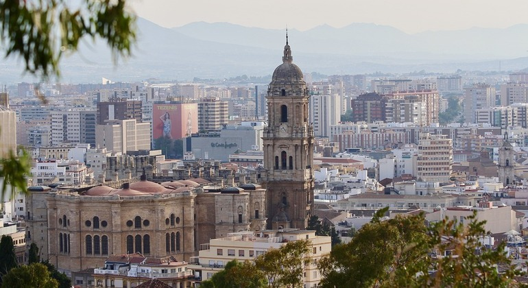Free Walking Tour: Culture, Customs, and Art in Malaga Provided by Irene