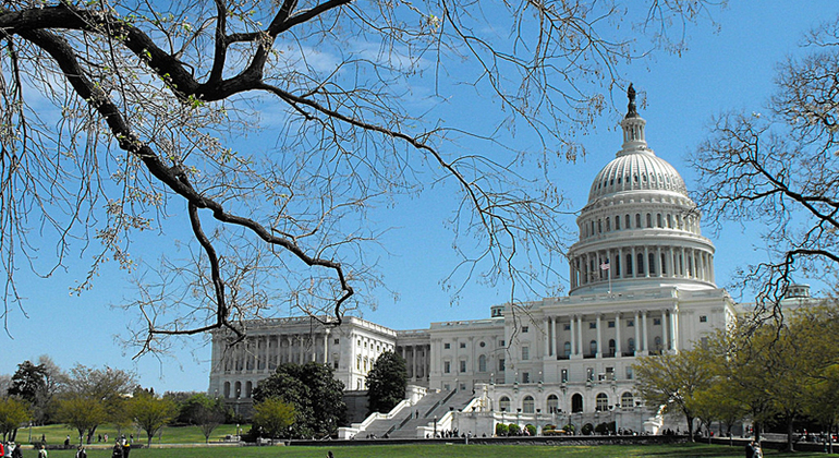 Washington DC Free Tour Provided by DC Private Tours