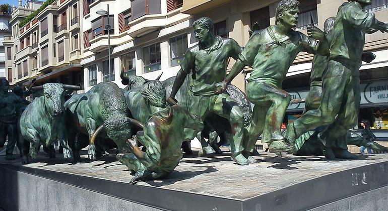 Paseo por la Pamplona Histórica Operado por Gonzalo Fernandez