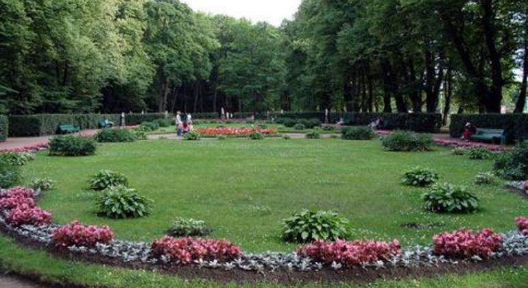 Jardines de san petersburgo san petersburgo - Punto jardin ...