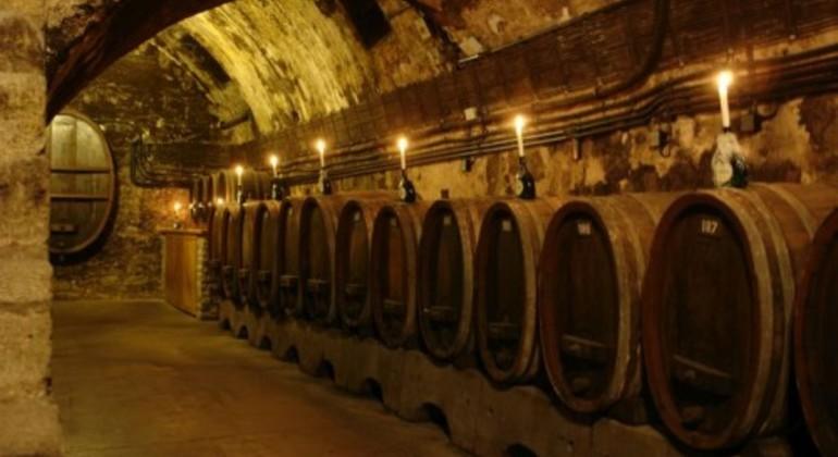 Wine World of Hungary Hungary — #2