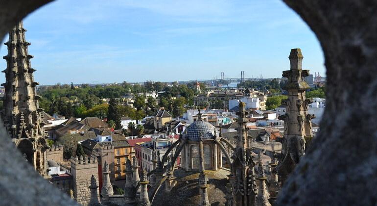 Free Walking Tour Sevilla Operado por Betogether Tours