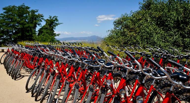 Daily Barcelona Bike Tour Spain — #2